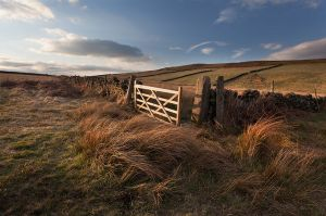 White Edge Gate