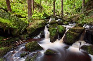 Wyming Brook Upstream