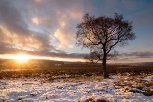 Sunrise on Lawrence Field