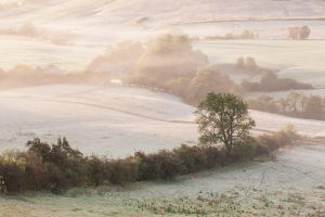 Nabend Mist and Frost