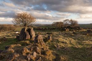 Royston Rocks 2