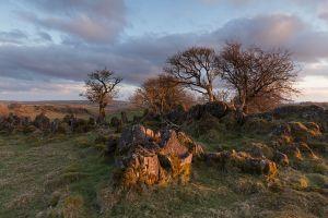 Royston Rocks 3