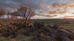 Royston Rocks 1