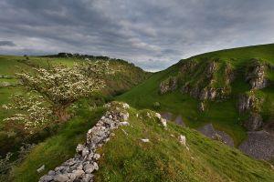 Peaseland Rocks